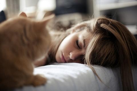 Get a good nap