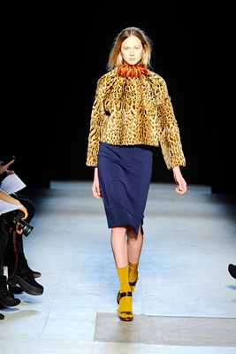 leopard jacket with cobalt blue skirt
