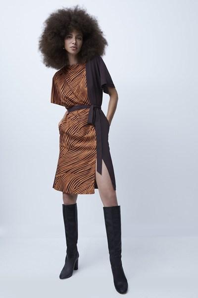 Rosalind Asymmetric Neck Dress